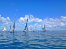 Ocean Regatta Royalty Free Stock Images