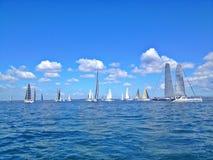 Ocean Regatta Stock Images