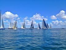 Ocean Regatta Royalty Free Stock Photography