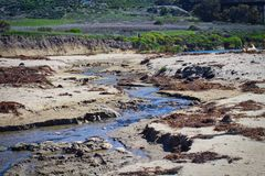 Ocean river low tide California. River flow on sandy beach in Southern California during low royalty free stock images