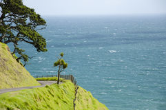 Ocean Road - Port Jackson - New Zealand Stock Images