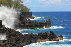 Ocean rock shore of Hawaii Royalty Free Stock Photo