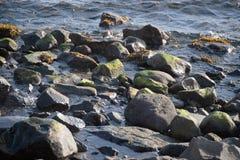 King Cove Alaska Ocean Rocks. Ocean Rocks along shore on road between King Cove and Cold Bay, Alaska royalty free stock photography