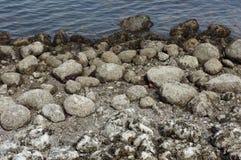 Ocean Rocks Stock Photos