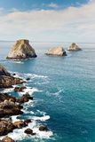 Ocean rocky coastline Royalty Free Stock Images