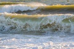 Golden waves, Nantucket island Stock Images
