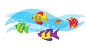 Ocean ryba Zdjęcia Stock