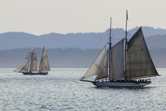 Ocean Sailing Ships  Royalty Free Stock Photography