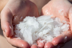 Ocean salt in hands. Big Island, Hawaii, ocean salt in hands, freshly picked from lava rocks Royalty Free Stock Photography
