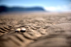 Ocean sand beach. Beach, sand, walk on the beach, relax, yellow, sea shells, blue sky in the distance, background, mountains Royalty Free Stock Image