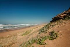Ocean sand dune Stock Image