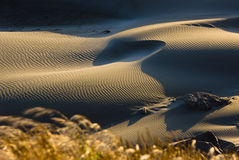 Ocean Sand Dunes Royalty Free Stock Photography