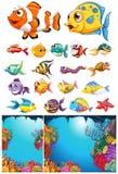 Ocean scena i wiele denni zwierzęta Obrazy Stock