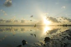 Ocean scene. Georgetown Guyana, South America. Outside the sea wall Royalty Free Stock Image
