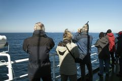 Adventurers whale watching with distant iceberg in background stock photography