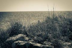 Ocean Scene Stock Images