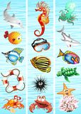 Ocean Sea Animal Background. Three Vertical Cartoon Marine Animals Banners Royalty Free Stock Photos
