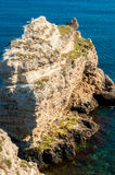 Ocean and sea cliffs in  summer Royalty Free Stock Photos