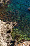 Ocean and sea cliffs in  summer Royalty Free Stock Photography