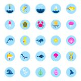 Ocean or sea logo with with animals and fish, shellfish and seashells. marine icon. use for the interface in the Royalty Free Stock Photography
