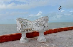Ocean sea panorama mexico white chairs and gulls Royalty Free Stock Image