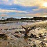Ocean seaside. Shimmering colorful coastal sunshiny day reflection on coastline of crystal Cove California Stock Photography