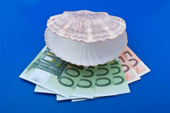 Ocean shell and euro Royalty Free Stock Photos
