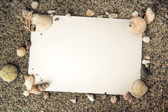 Ocean shell frame background with white paper Royalty Free Stock Image