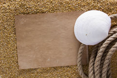 Ocean shell on the sand Royalty Free Stock Photos