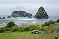 Ocean shore in Samuel Boardman state par, Whaleshead, Oregon, US Royalty Free Stock Photography