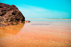 Ocean shore. Transparent water and blue sky. Idillic beach landscape: stones of coquina in transparent water, swash and blue sky. Selective focus Stock Images