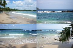 Ocean shore tropical island with palm trees in summer. In sunny weather collage of four photos Stock Images