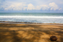 Ocean side. With brown sand beach Stock Photography