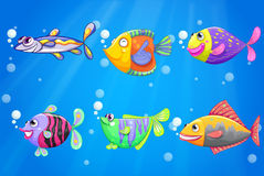An ocean with six colorful fishes Royalty Free Stock Photo
