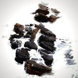 ocean skały Obrazy Royalty Free