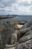ocean skalisty Zdjęcie Royalty Free
