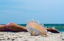 ocean skorupa na piasku przeciw tłu skórnicza dziewczyna w kolorowym swimsuit na plaży obrazy royalty free