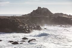 Ocean Spokojny Rozbija na wybrzeżu w Północnym Kalifornia zdjęcia royalty free