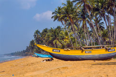 On the ocean, Sri Lanka. The dog is lying in the shadow of the boat on the ocean Royalty Free Stock Images