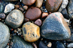 Ocean stones. Stones in denmark in the north coast of the seeland island Royalty Free Stock Photography