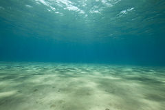 Ocean and sun Royalty Free Stock Images