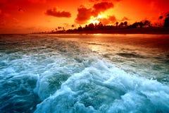 Ocean sunrise. Landscape ocean sunrise golden sky Stock Images
