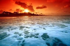 Ocean sunrise. Landscape ocean sunrise golden sky Royalty Free Stock Image