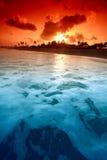 Ocean sunrise. Landscape ocean sunrise golden sky Royalty Free Stock Photo