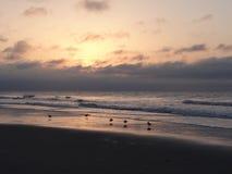 Ocean Sunrise 3. Sunrise on the Atlantic Ocean in Myrtle Beach, South Carolina Royalty Free Stock Photo