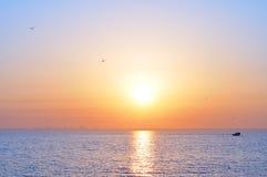 Ocean sunrise and birds. Orange-blue ocean sunrise and birds Stock Photography