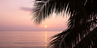 Ocean sunset Royalty Free Stock Images
