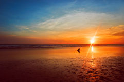 Ocean sunset. Beautiful Indian ocean sunset with a man silhouette, Bali island, Indonesia stock photography
