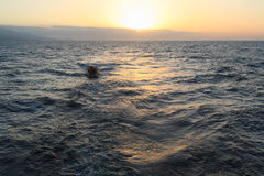 Ocean Sunset with Boat Stock Photos