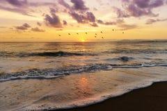 Ocean Sunset Stock Image